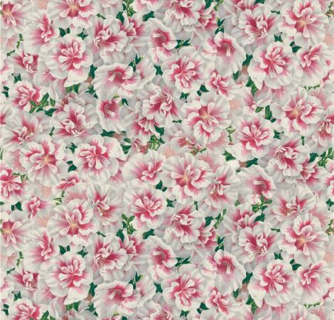Variegated Azalea - Azalea fabric