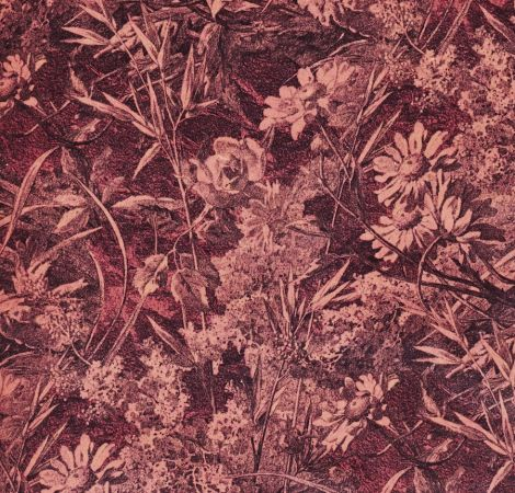 Royal Daisy - Velvet Blush fabric