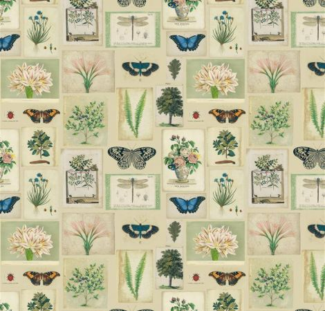 Flora and Fauna - Parchment fabric