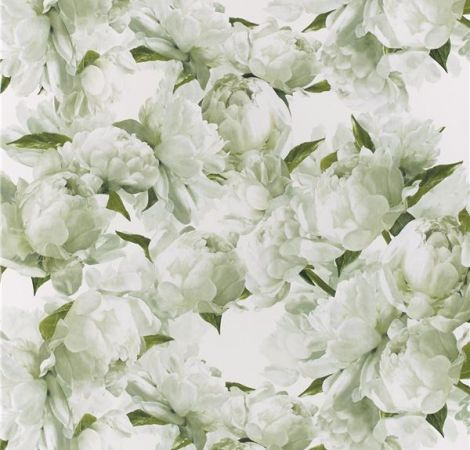 Peonia - Chartreuse wallpaper