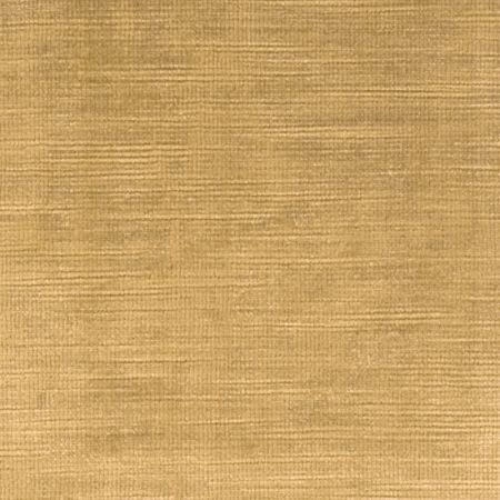 Majestic Velvet Gold Fabric Majestic Velvets Clarke