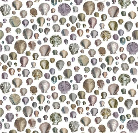 Captain Thomas Browns Shells - Oyster fabric
