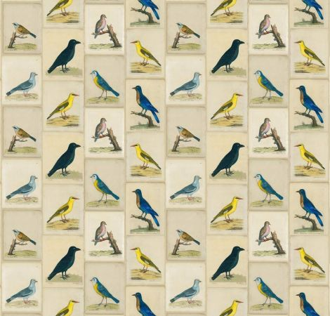 Bird Collage - Parchment fabric